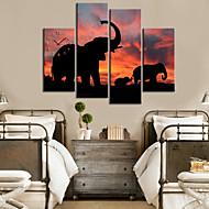 Modern Style Elephant Pattern seinäkello Canvas 4kpl