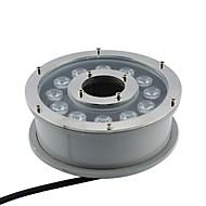 LED 12pcs High Power LED udendørs 12W RGB Underwater Spring Light 24V