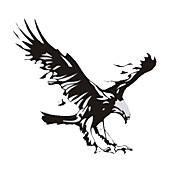 50 * 50 centímetros reflexivas os águia carro personalidade adesivos (1pç)