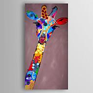 Håndmalte Dyr Vertikal,Moderne Et Panel Lerret Hang malte oljemaleri For Hjem Dekor