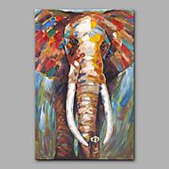 מצויר ביד בעלי חיים אנכי,מודרני פנל אחד בד ציור שמן צבוע-Hang For קישוט הבית