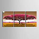 abordables Impresiones-Estampado Laminados en lienzo - Floral / Botánico Modern