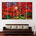 cheap Prints-E-HOME® Stretched Canvas Art Maple Decoration Painting  Set of  5