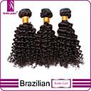 abordables Utensilios de Horno-3 paquetes Cabello Brasileño Rizado / Clásico / Kinky Curly Cabello Virgen Tejidos Humanos Cabello Cabello humano teje Extensiones de cabello humano / Kinky rizado