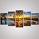 cheap Stretched Canvas Prints-Landscape Leisure Floral/Botanical Photographic Modern Traditional, Five Panels Horizontal Print Wall Decor Home Decoration