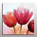 abordables Peintures à Fleurs / Botaniques-Peinture à l'huile Hang-peint Peint à la main - Abstrait A fleurs / Botanique Moderne Avec Cadre