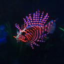 זול קישוטים וחצץ-דגים קישוט אקווריום דגים מלאכותיים קישוט שרף