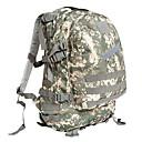 preiswerte Jagdhandschuhe & Hüte-30 L Rucksäcke - tragbar Außen Camping & Wandern, Jagd Oxford