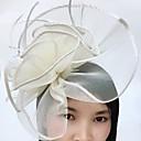 baratos Acessórios de Cabelo-Pena / Rede Fascinadores / Decoração de Cabelo / Véus de Birdcage com Floral 1pç Casamento / Ocasião Especial Capacete