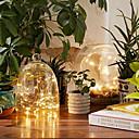 preiswerte LED Lichterketten-5m Leuchtgirlanden 50 LEDs Warmes Weiß / Weiß / Rot <5 V