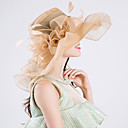 cheap Party Headpieces-Feather / Silk / Organza Fascinators / Hats with 1 Wedding / Special Occasion / Party / Evening Headpiece
