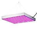 tanie LED Grow Lights-1 szt. 420 lm Oprawia oświetleniowa Grow 289 Koraliki LED SMD 3528 Czerwony / Niebieski 85-265 V / 1 sztuka / RoHs / CCC