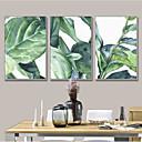 billige Trykk-Frame Art Botanisk Veggkunst, Stål Materiale med ramme Hjem Dekor Rammekunst Stue