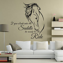 cheap Wall Stickers-Animals Words & Quotes Wall Stickers Plane Wall Stickers 3D Wall Stickers Decorative Wall Stickers Wedding Stickers, Vinyl Paper Home
