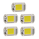 cheap External Hard Drives-5pcs 50W 220V DIY COB LED Chip Bulb Bead for Flood Light