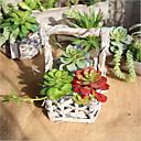 tanie Sztuczne kwiaty-Sztuczne Kwiaty 1 Gałąź Zwyczajny / Styl pasterski Sukulenty Bukiety na stół