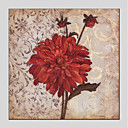cheap Floral/Botanical Paintings-Oil Painting Hand Painted - Floral / Botanical Modern Canvas