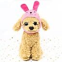 ieftine Câine Pături-Rozătoare / Câini / Iepuri Pălării, Șepci & Bandane / Bandane & Căciuli Îmbrăcăminte Câini Caracter Fucsia / Verde / Albastru Jos Costume Pentru animale de companie Femeie Costum de bijuterii