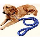 preiswerte Halsbänder, Geschirre und Leinen für Hunde-Hunde Halsbänder / Leinen Tragbar / Regolabile / Einziehbar / Klappbar Solide Nylon Purpur / Grün / Blau