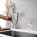 preiswerte Küchenarmaturen-Armatur für die Küche - Zwei Griffe Ein Loch Lackierte Oberflächen Pull-out / Pull-down deckenmontiert Moderne