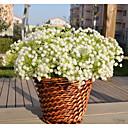 זול קישוטי חתונה-עיצוב מיוחד לחתונה PP(פוליפרופילן) קישוטי חתונה חתונה / פֶסטִיבָל חופשה / רומנטיקה / אופנה כל העונות