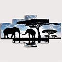 povoljno USB memorije-Print Stretched Canvas Prints - Pejzaž Životinje Tradicionalno Moderna Pet ploha Umjetničke grafike