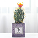 זול פרחים מלאכותיים-פרחים מלאכותיים 1 ענף קלאסי מודרני עכשווי פסטורלי סגנון צמחים צמחים עסיסיים פרחים לשולחן