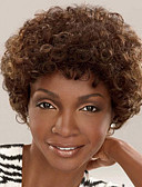 cheap Plus Size Dresses-Synthetic Wig Curly Synthetic Hair African American Wig Brown Wig Women's Short Capless
