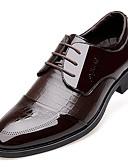 זול מכנסיים ושורטים לגברים-בגדי ריקוד גברים נעליים פורמליות עור פטנט אביב / סתיו נוחות נעלי אוקספורד שחור / חום