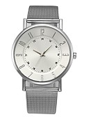 ieftine Quartz-Pentru femei Ceas Elegant Oțel inoxidabil Argint Cronograf Ceas Casual Analog femei Casual Elegant - Argintiu Un an Durată de Viaţă Baterie