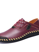 povoljno Bluza-Muškarci Cipele za vožnju Mekana koža / Koža Proljeće / Jesen Udobne cipele Sneakers Hodanje Crn / Braon / Lila-roza