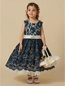 Χαμηλού Κόστους Λουλουδάτα φορέματα για κορίτσια-Γραμμή Α Μέχρι το γόνατο Φόρεμα για Κοριτσάκι Λουλουδιών - Δαντέλα / Τούλι Αμάνικο Με Κόσμημα με Δαντέλα / Ζώνη / Κορδέλα με LAN TING BRIDE®