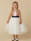זול שמלות לילדות פרחים-נסיכה באורך הקרסול שמלה לנערת הפרחים - טול / נצנצים ללא שרוולים עם תכשיטים עם פפיון(ים) / Paillette על ידי LAN TING BRIDE®