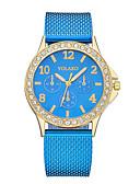 ieftine Quartz-Pentru femei Ceas de Mână Quartz Ceas Casual Plastic Bandă Analog Modă minimalist Negru / Alb / Albastru - Albastru Roz Maro deschis