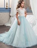 저렴한 어린이 & 어린이-아동 여아 단 정교한 디테일 파티 홀리데이 블루 & 화이트 컬러 블럭 메쉬 패치 워크 자수 장식 짧은 소매 맥시 면 폴리에스테르 드레스 블러슁 핑크