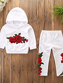 cheap Girls' Clothing Sets-Kids / Toddler Girls' Active / Basic Daily / Holiday Floral Embroidered Long Sleeve Regular Cotton / Spandex Clothing Set White