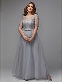 Χαμηλού Κόστους Φορέματα ειδικών περιστάσεων-Γραμμή Α Με Κόσμημα Μακρύ Τούλι Φόρεμα με Εισαγωγή δαντέλας με TS Couture® / Χοροεσπερίδα