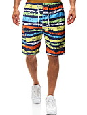baratos Bikinis-Homens Arco-íris Bermuda de Natação Calcinhas, Shorts & Calças de Praia Roupa de Banho - Estampa Colorida L XL XXL Arco-íris