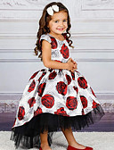 זול שמלות לבנות-נסיכה עד הריצפה / ארוך שמלה לנערת הפרחים  - פוליאסטר / טול שרוולים קצרים עם תכשיטים עם פפיון(ים) / דוגמא \ הדפס / חגורה על ידי LAN TING Express