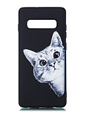 cheap Cellphone Case-Case For Samsung Galaxy Galaxy S10 Plus / Galaxy S10 E Frosted / Pattern Back Cover Cat Soft TPU for S9 / S9 Plus / S8 Plus