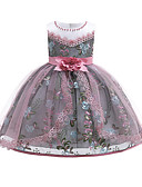 お買い得  女児 ドレス-子供 / 幼児 女の子 活発的 / かわいいスタイル フラワー ノースリーブ 膝丈 ドレス ピンク