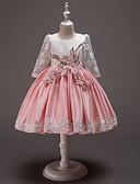 halpa Tyttöjen mekot-Lapset Taapero Tyttöjen Vintage Makea Color Block Silmukka Kirjailtu Lace Trim Pitkähihainen Reisipituinen Mekko Punastuvan vaaleanpunainen
