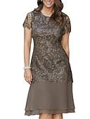 preiswerte Romantische Spitze-Damen Übergrössen Spitze Hülle Kleid - Spitze, Solide Knielang
