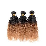 Cabello humano Cabello Hindú Ombre Rizado rizado Ondulado Extensiones de cabello 3 Piezas # T1B -27