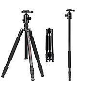 Aleación de aluminio y magnesio 50 4.0 Secciones Nikon Canon Trípode