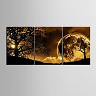 Canvas Set LandschapDrie panelen Verticaal Print Art Muurdecoratie For Huisdecoratie