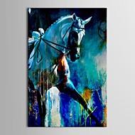 baratos -Pintados à mão Animais Vertical Tela de pintura Pintura a Óleo Decoração para casa 1 Painel