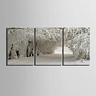 e-Home® venytetty kankaalle art lumi kohtaus sisustusmaalaus sarja 3