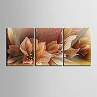 e-HOME® plátně umění květinová výzdoba malování set of 3