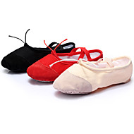 Women's Dance Shoes Ballet/Latin/Yoga/Dance Sneakers Canvas Flat Heel Black/Pink/Red Customizable